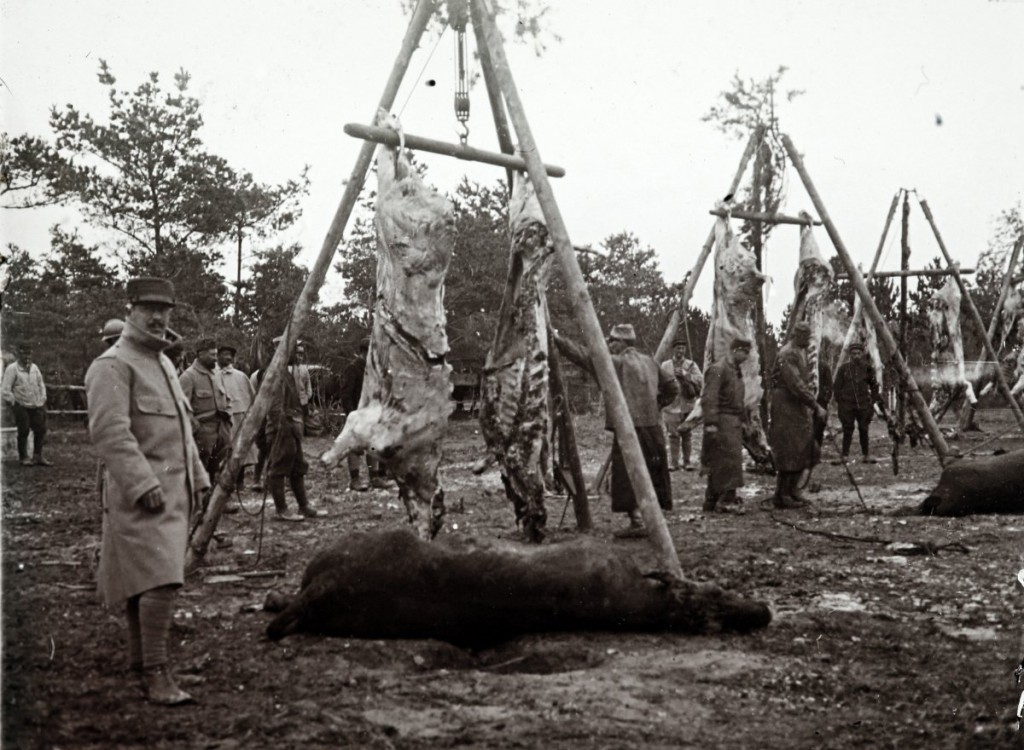 vojna-v-jarkih-11